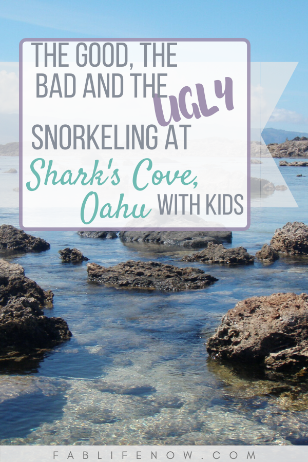 The good, bad, and ugly: Snorkling at Shark's Cove, Oahu with kids