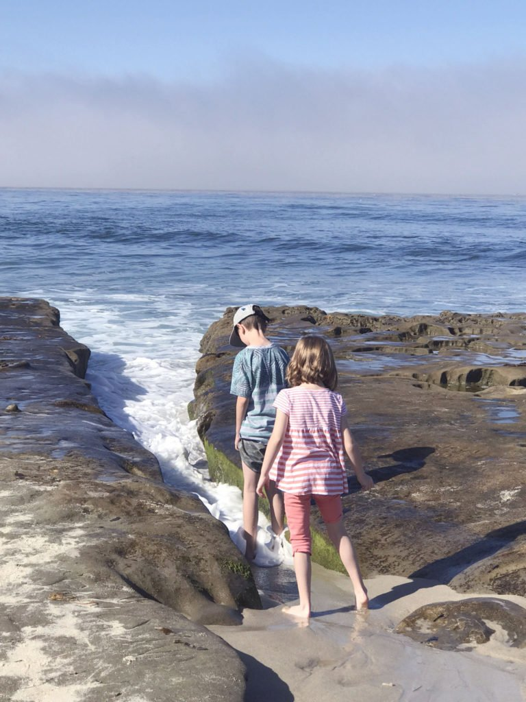 exploring the tide pools in san diego, playing at the best san diego beach, taking kids to la jolla, finding wild life in la jolla